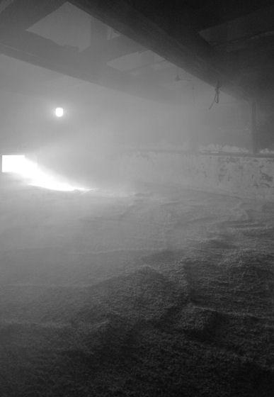 Peat Smoke at the Laphroaig Distillery, Islay