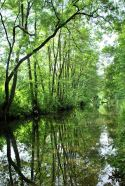 Cromford Canal, Cromford, The Peak District, UK