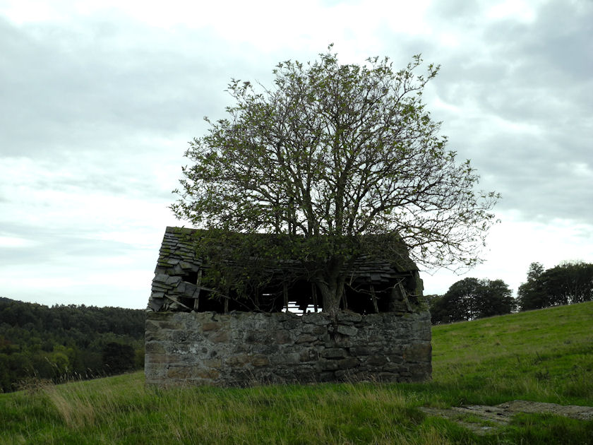 Ruined Cottage, near Youlgreave, Peak District National Park, England